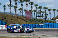 #60 Michael Shank Racing with Curb/Agajanian : John Pew, Oswaldo Negri, Jr., Justin Wilson