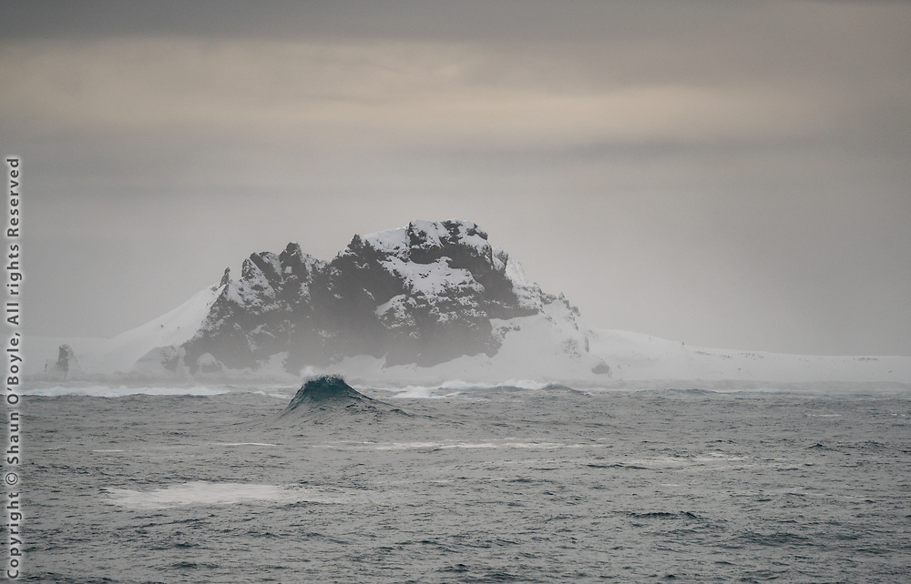Cape Shirreff, South Shetland Islands.