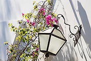 Bougainvillea and wrought iron lamp; Museo Larco, Lima, Peru.