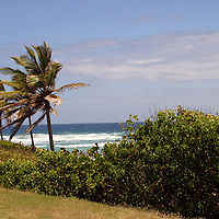 Ocean peak between Cattlewash and Bathsheba Beach on the east coast of Barbados in the Caribbean.