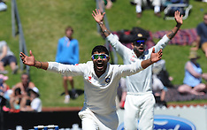Wellington-Cricket, New Zealand v India, 2nd test, February 16