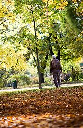 THEMENBILD - Herbst im Wiener Prater. Das Bild wurde am 27. Oktober 2013 aufgenommen. im Bild Mann spaziert die Prater Hauptallee entlang // THEMES PICTURE - Autumn at Prater in Vienna. The image was taken on october, 27th, 2013. Picture shows Person is walking along an Alley , AUT, EXPA Pictures © 2013, PhotoCredit: EXPA/ Michael Gruber