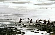 Neolithic prehistoric cave men caveman cavemen cave man walking on mud flat tidal estuary carrying deer food carcass and spears