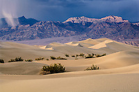 Death Valley sand dunes & Grapevine Mountains of the Amargosa Range near Stovepipe Wells; Death Valley NP., CA