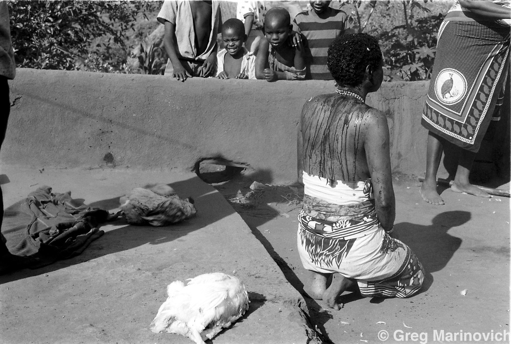 A chicken is killed over Sowetan Cookie Kashane at her initiation as Ndau medium / diviner at Dolly Village, Venda, South Africa Feb 4, 1991. (Greg Marinovich)