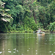 A canoe heads into Tortuguero National Park, Costa Rica on April 8, 2009. The park is a haven for wildlife viewing, and as the name suggests, turtle watching.  (Photo/William Drumm)