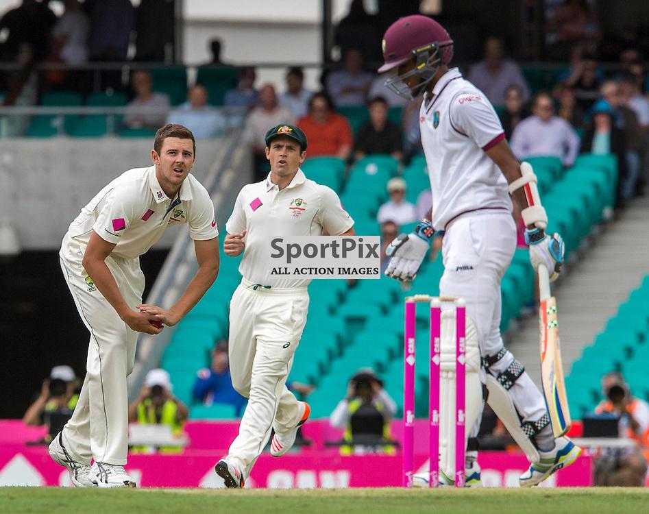 3rd Test Match 2015-16 Day 1, Australia v West Indies, Sydney Cricket Ground; 3 January 2016<br /> Australian Josh Hazlewood stares down West Indian Kraigg Brathwaite