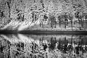 Pine trees catch the last light of the day as they reflect in the calm waters of Howden Reservoir, Upper Derwent Valley, Peak District National Park. Summer in Derbyshire, England, UK. Infrared capture. Summer Solstice, June 2016.