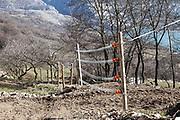 16 February 2017, Barrea, AQ Italy - Electric fence inside the small family farm near the village of Barrea.