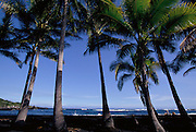 Punaluu Black Sand Beach, Punaluu, Island of Hawaii, Hawaii, USA<br />