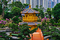 Chine, Hong Kong, Kowloon, jardin de Nan Lian et nonnerie de Chi Lin // China, Hong Kong, Kowloon, The pagoda at the Chi Lin Nunnery and Nan Lian Garden