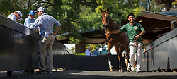 Keeneland Book 3 Day 1, Saturday, Sept. 16, 2017 at Keeneland in Lexington.