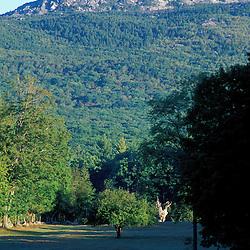 Mt. Monadnock as seen from a field in Jaffrey.  Jaffrey, NH