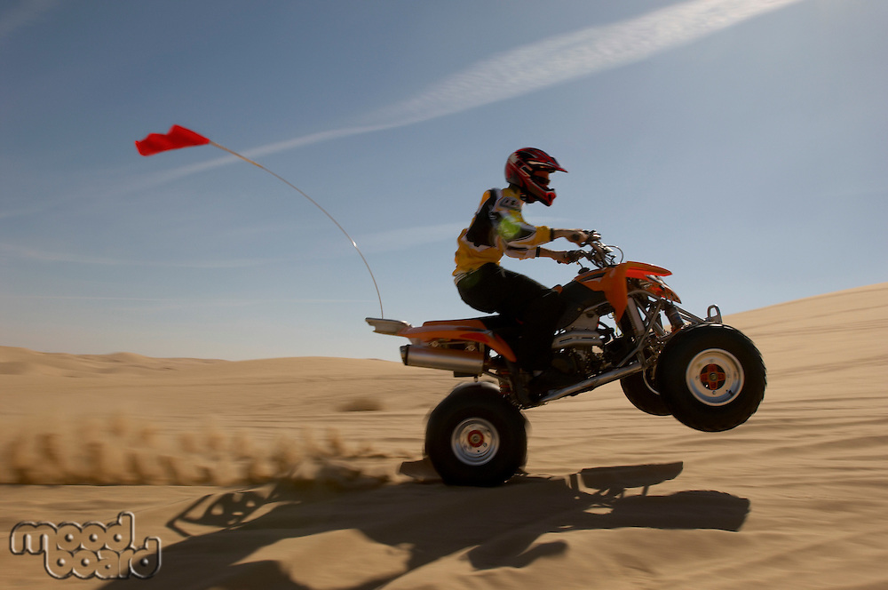 Quad bike rider doing wheelie in desert side view