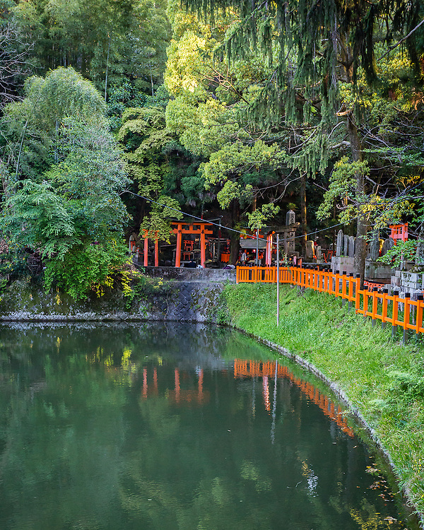 Climbing through the slope of the mountain, the path in Fushimi Inari leads through the series of red tori, and passes through a small lake.