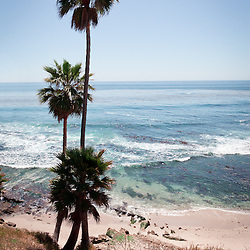 Photo of California coastline, Pacific Ocean, and palm trees in Laguna Beach in Orange County Southern California.