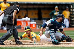 OAKLAND, CA - MAY 04: Josh Reddick #22 of the Oakland Athletics dives past Chris Iannetta #33 of the Seattle Mariners to score a run in front of umpire Adam Hamari #78 during the fourth inning at the Oakland Coliseum on May 4, 2016 in Oakland, California. (Photo by Jason O. Watson/Getty Images) *** Local Caption *** Josh Reddick; Chris Iannetta; Adam Hamari