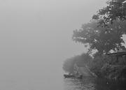 Camopi, Guyane, 2015.<br /> <br /> La commune de Camopi s&rsquo;&eacute;tend en pays am&eacute;rindien Teko et Way&atilde;mpi sur une superficie de 10 030 km&sup2; au Sud Est de la Guyane. La commune cr&eacute;&eacute;e en 1969 est constitu&eacute;e d&rsquo;une zone d&rsquo;administration centrale, le bourg de Camopi et d&rsquo;une zone de vie annexe dans les villages de Trois-Sauts &agrave; une journ&eacute;e de pirogue en saison haute et deux jours en saison s&egrave;che.<br /> Commune la plus enclav&eacute;e de la Guyane, les activit&eacute;s &eacute;conomiques y sont quasi inexistantes. Un transporteur fluvial fait le lien avec Saint-Georges de fa&ccedil;on hebdomadaire, en fonction des besoins. Le voyage peut durer entre quatre heures et deux jours. Une annexe du coll&egrave;ge de Saint-Georges a &eacute;t&eacute; ouverte en 2008.<br /> Jusqu&rsquo;alors les enfants &eacute;taient scolaris&eacute;s &agrave; Saint-Georges, &agrave; deux cents kilom&egrave;tres en aval et h&eacute;berg&eacute;s dans un home indien, un pensionnat catholique. Une piste d&rsquo;aviation inutilisable en saison des pluies est en cours d&rsquo;am&eacute;nagement. Camopi est situ&eacute; dans une r&eacute;gion aurif&egrave;re qui fait partie des plus riches du monde en mati&egrave;re de biodiversit&eacute;. Sans autre r&eacute;elle perspective de vie, certains habitants participent aux transports fluviaux qui alimentent les sites d&rsquo;orpaillage ill&eacute;gaux de la r&eacute;gion.<br /> <br /> Les suicides r&eacute;currents qui touchent la communaut&eacute; am&eacute;rindienne de Camopi depuis quelques ann&eacute;es ont remis en question le maintien de la zone d'acc&egrave;s r&eacute;glement&eacute; mise en place en 1970, qui limite les apports de l&rsquo;ext&eacute;rieur et contribue &agrave; l&rsquo;isolement de la commune. A la demande de la population, le pr&eacute;fet a extrait le bourg de Camopi de cette zone soumise &agrave; autorisation le 14 juin 2013. Un accord pr&eacute;f