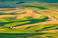 Farmland in the Palouse region of rural Washington State<br /> <br /> &copy;2016, Sean Phillips<br /> http://www.RiverwoodPhotography.com