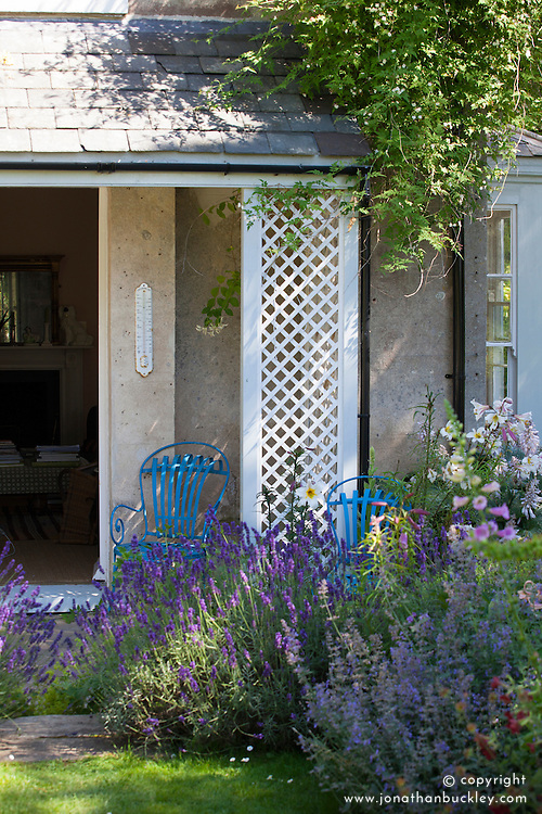 Doorway with Lavandula angustifolia 'Hidcote' AGM (English Lavender)