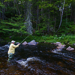 A man fly-fishing for brook trout in Cold Stream in Maine's Northern Forest. West Forks.