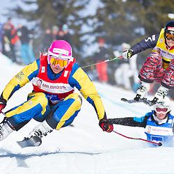 20110129: GER, FIS Skicross World Cup, Grasgehren