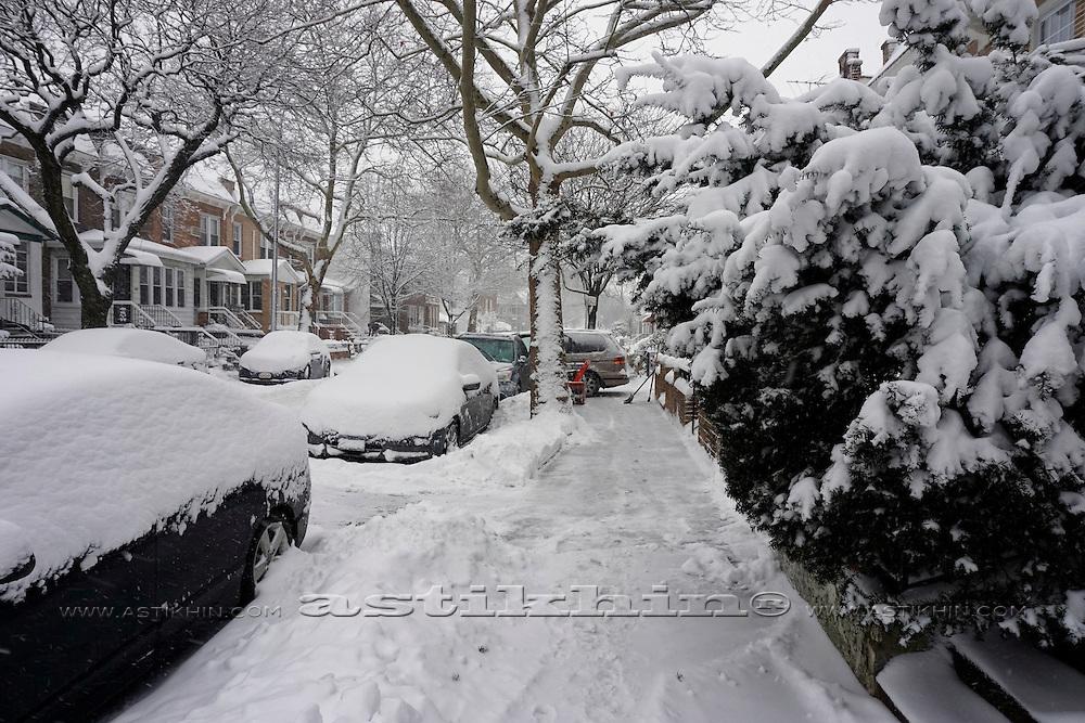 Winter in Brooklyn's street.