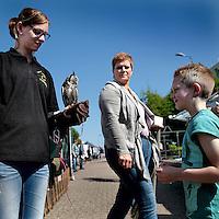 Nederland, Stein. 15 mei 2015.<br /> In Oud-Stein vindt de jaarlijkse Meimarkt plaats. De marktkramen en promotiestands zijn te vinden in de Valderstraat – Kruisstraat (gedeeltelijk) – Wilhelminaplein en Havenstraat. Daarnaast zijn er ook allerlei kinderactiviteiten.<br /> Op de foto: een ouderwetse mandenmaker op de meimarkt.<br /> Op de foto: Belangstelling bij de stand van Roofvogelvereniging 't Ulehofke.<br /> <br /> <br /> <br /> Foto: Jean-Pierre Jans