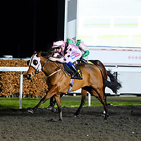 Kempton 5th January
