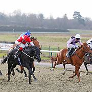 Lingfield 25th January