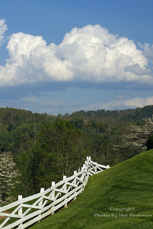 One of the many beautiful views at Blackberry Farm in Walland,TN.