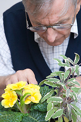 Visually impaired man planting up a decorative pot in a Thrive gardening workshop visiting the NRSB,