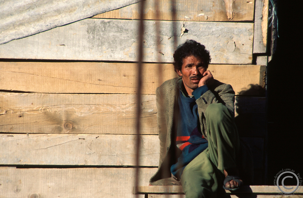 Resting in the afternoon sun in Manali.