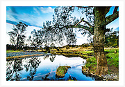 Late afternoon on a quiet corner of the Macintyre River, upstream from Inverell [Paradise, NSW, Australia]<br />