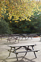 Picnic tables in park