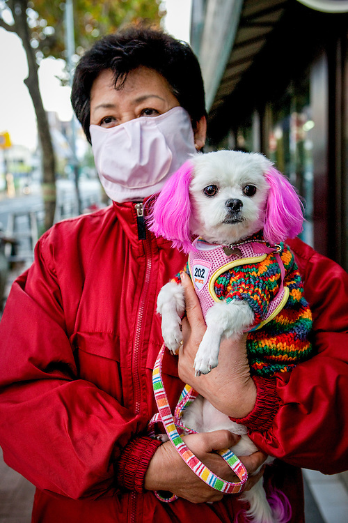 Woman holding her dog and wearing a face mask as prevention against the swine flu virus at Saemun Market in Daegu, South Korea.