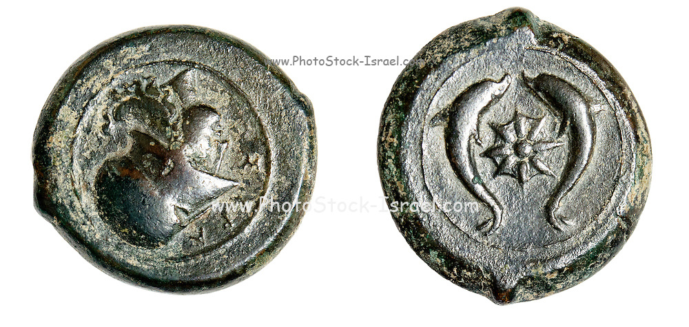 Ancient Syracuse bronze litra coin 344-336 BCE depicting the head of Athena and starfish with dolphins on the reverse