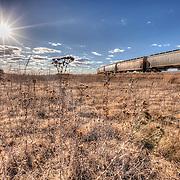 Railcars near a grain elevator off of Highway 61 outside of Pratt, Kansas.