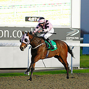 Kempton 29th November 2012