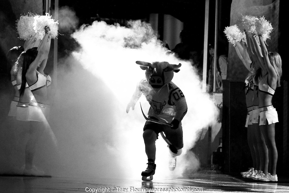 During the first period of an AHL hockey game between the Texas Stars and the San Antonio Rampage, Friday, Mar. 12, 2010, at the AT&T Center in San Antonio. (Trey Flournoy/pressphotointl.com)