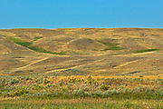 Rolling hills and coulees of mixed-grass native prairie<br />