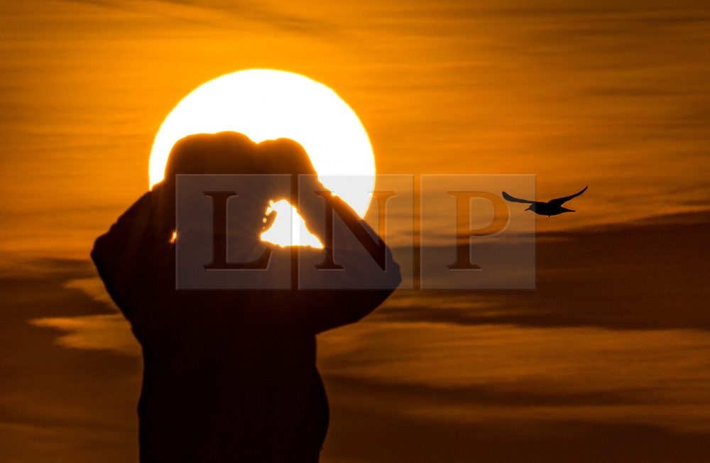 © Licensed to London News Pictures. 30/01/2018. London, UK. A birdwatcher enjoys the sunrise from the top of Primrose Hill. Photo credit: Peter Macdiarmid/LNP