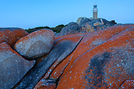 Oceania, Australia; Australian; Tasmania; Bay of Fires, Eddystone Point Lighthouse