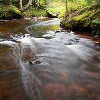 Stream feeding Chapel Falls, Pictured Rocks National Lakeshore, MI