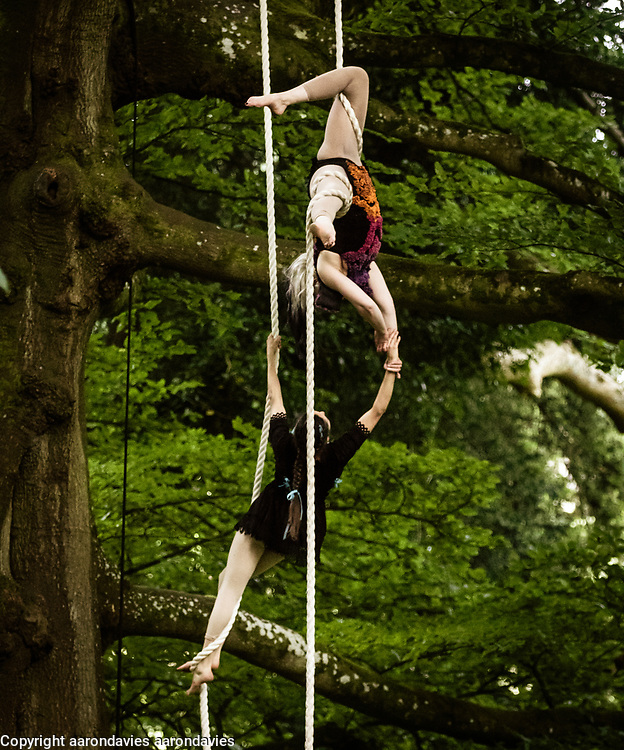Whispering Woods Aerial Performance Whispering Woods performance at the National Trust, Bath