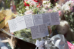 &copy; Licensed to London News Pictures. 26/05/17  MANCHESTER   , UK. <br />  <br /> A sea of flowers and balloons in St Ann's Square , Manchester , today (Friday 26th May 2017) as people gather to remember the victims of the terrorist bomb attack on Monday at the Manchester Arena. Tributes to Kelly Brewster.<br />   <br /> Photo credit: CHRIS BULL/LNP