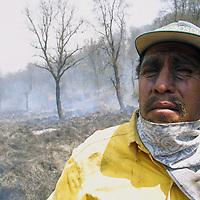 Toluca, Méx.- Brigadistas y Voluntarios de Probosque combaten el incendio forestal iniciado el dia de ayer en las faldas del Volcan Xinantecatl (Nevado de Toluca) el cual ha devastado al menos 70 hectareas de bosque y pastizales. Autoridades señalan que el incendio fue provocado. Agencia MVT / Mario Vazquez de la Torre. (DIGITAL)<br /> <br /> NO ARCHIVAR - NO ARCHIVE