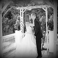 Wedding & Engagement Favorites