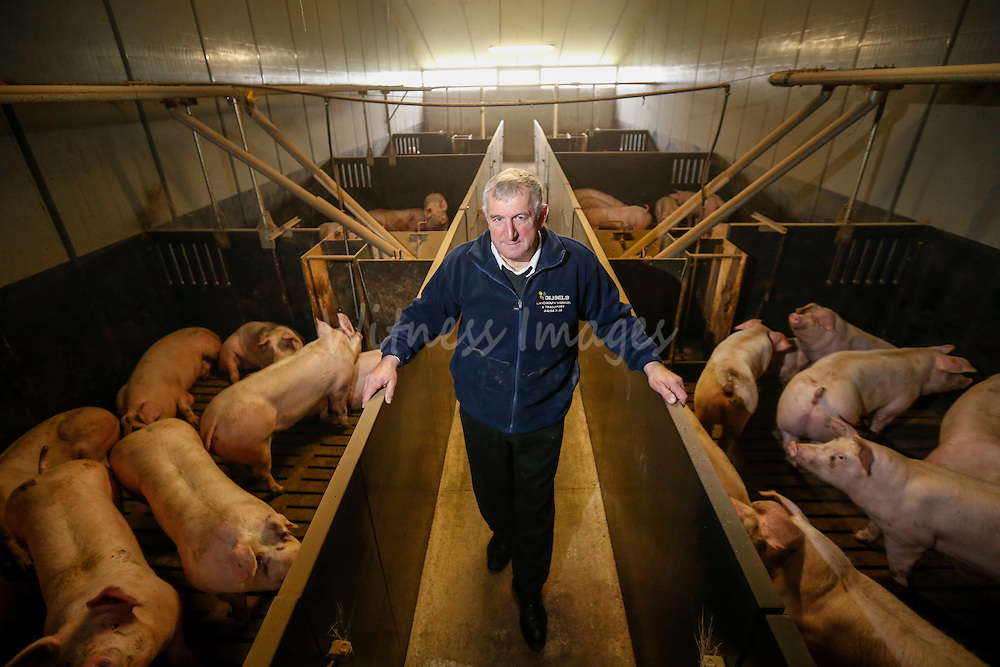 "Belgian farmer  Alfons Gios during the DG AGRI Study trip to Belgium ""The CAP and Innovation"". Visit of Alfons Gios' pig farm in Herenthout November 27, 2013.  Photo : Thierry Roge © European Union"