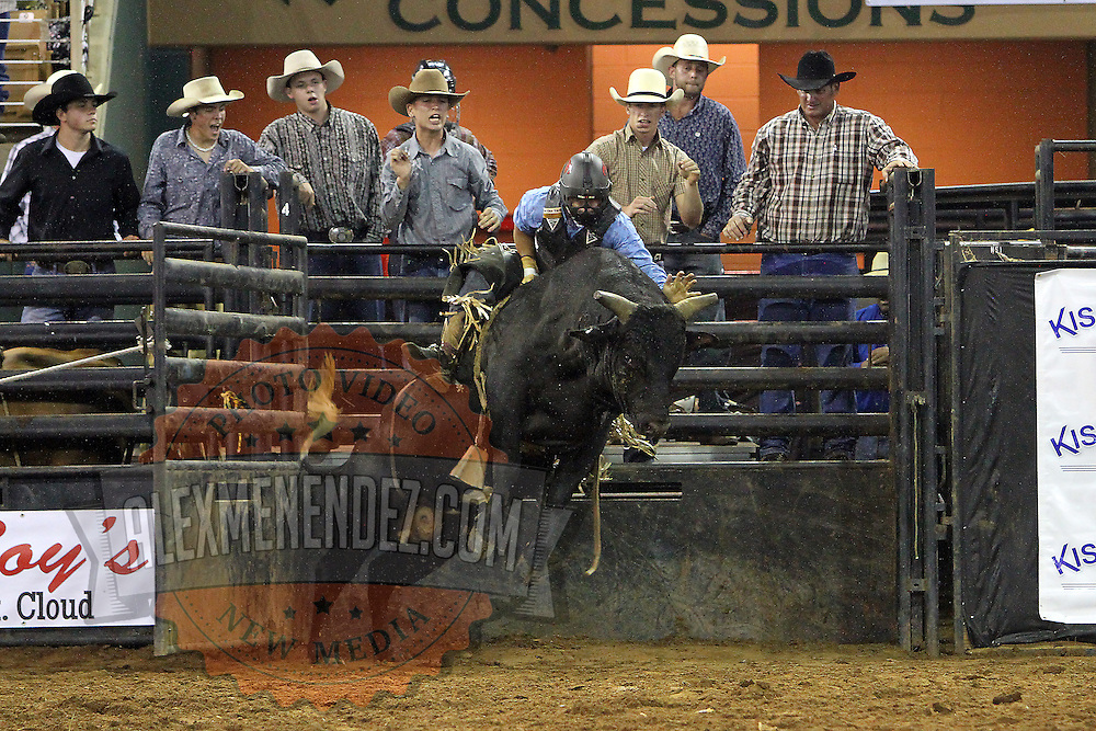Tyler West of St. Cloud, Florida rides a bull during the 129th performance of the PRCA Silver Spurs Rodeo at the Silver Spurs Arena   on Friday, June 1, 2012 in Kissimmee, Florida. (AP Photo/Alex Menendez) Silver Spurs rodeo action in Kissimee, Florida. PRCA rodeo event in Florida. The 129th annual running of the cowboy event.